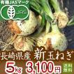 有機玉ねぎ5kg・29年産新たまねぎ・有機栽培(有機JAS)【送料無料】