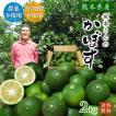 特別栽培かぼす2kg減農薬・化学肥料不使用・熊本県産