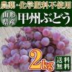 稲泉農園・山形県産甲州ぶどう秀品(種ありぶどう)2kg(5〜6房前後)