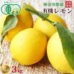 有機レモン3kg・神奈川県小田原産有機栽培(有機JAS)A品送料無料