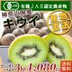 石綿敏久さん栽培のキウイフルーツ(Mサイズ以上混合)3kg【送料無料】