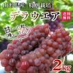 稲泉農園・山形県産デラウェアぶどう2kg(10〜12房)