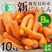 有機にんじん10kg・訳あり・ジュース用・加工用・規格外品・鹿児島県産