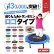 【送料無料】トランポリン 家庭用 102cm 折り畳み式 大人用 エクササイズ 子供用