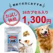 【DM便送料無料】犬・猫のサプリメント・免疫を維持し元気・食欲を保つ コルディカプセル