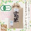有機JAS認証 オーガニックライス コシヒカリ 10kg 玄米 令和2年産 無農薬有機栽培 1等米