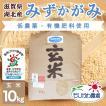 令和2年 滋賀県産 みずかがみ 玄米 10kg