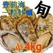 一粒牡蠣 (かき)小 豊前海産カキ 4kg