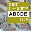 切り文字ステッカー   1〜5文字 色&英数字・変更OK   TEXT- A  SS/1cm  カッティングシート・シール・デカール