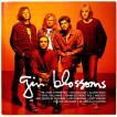 【中古】 GIN BLOSSOMS ジン・ブロッサムズ / ICON〔輸入盤CD〕