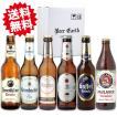 ドイツビール6本飲み比べセット/お中元 暑中見舞い 誕生日 内祝 各種熨斗・ギフトシール対応 家飲みにも
