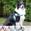 中型犬・大型犬用ハーネス トレ・ポンティ Sporza(スポルツァ) 4サイズ
