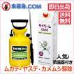 噴霧器セット/ プロ用殺虫剤 サイベーレ0.5SC (1.8L)+ 噴霧器GS-006(1台)4リッター用 プロも使う ムカデ ヤスデ ゲジ 退治用 殺虫剤