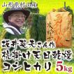 コシヒカリ 5kg 白米 米 お米 有機栽培 天日乾燥 山形県村山産 29年産 送料無料