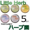 ハーブの栽培セット♪ リトルハーブ 5種類セット (種/プチギフト/栽培キット)