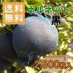 かんきつ用果実袋 ネルネット黒 K-22 ストッキングタイプ 2,500枚入