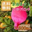 かんきつ用果実袋 ネルネット ピンク K-221 ストッキングタイプ 2,500枚入