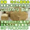 新米 『無農薬 こしひかり』1キロ玄米 千葉県成田市『おかげさま農場産』