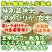 『特別栽培 ゆめぴりか』1キロ玄米 月形町産