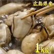 ジャンボサイズ 広島産 生牡蠣1kg(解凍後850g/約25−35粒) 鍋 送料無料(かき 牡蠣 カキ 加熱用)