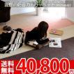 カーペット 防音カーペット 十畳 10畳 江戸間 絨毯 エディcarpet