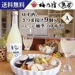 ゆず酒とさつま揚げのセットA 柚季 9個 9種類 魚万 ギフト 送料無料 薩摩揚げ 惣菜 揚げ物 冷蔵 おでん 贈答用