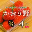 いちご かおり野 4パックセット 1kg (ナチュラ日野)