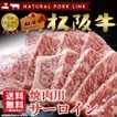 お中元 御中元 肉 牛 ギフト Gift 焼き肉 松阪牛 A5A4 サーロイン 400g 黒毛和牛