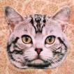 ニャンコ好き必見!インパクト絶大!ネコ好きには絶対おすすめのニャンコ顔ポーチ!