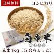 玄米 1キロ(5合ちょっと) コシヒカリ 白竜米 30年産 広島県三原市大和町産 送料無料