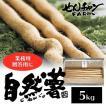 せんチャンファーム 自然薯 5kg 業務用 三原ブランド認定 広島県三原市