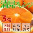 【送料無料】広島県産・産地直送 瀬戸内で育った完熟清見オレンジ(清見タンゴール) 3kg【ご家庭用・訳あり品】