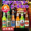 海外ビール 輸入ビール 送料無料 海外ビール6本セット アジアンカンフービールセット(北海道・沖縄+890円)