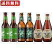 海外ビール 輸入ビール 送料無料 海外ビールセット アメリカビール6本セット (北海道・沖縄+890円)