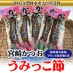 お歳暮に人気 宮崎かつおうみっこ節 宮崎県水産ブランド認定 1袋1本入り 日南市漁協女性部