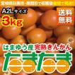 完熟きんかん たまたま 3kg A2Lサイズ 宮崎県日南市・串間市産(送料無料)