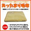 あったまり毛布 ベージュ シングル 日本製 軽量で暖かい 【送料無料】