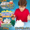『サンズアライブ 〜天使の砂〜 サンドボックス』Sands Alive 室内用 お砂遊び