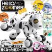 犬型ロボットトイ『Omnibot Hello!Zoomer ハーティーダルメシアン』【ハロー!ズーマー】〔予約:数営業日程〕