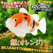 ROBO FISH ロボフィッシュ(鯉/オレンジ) 〔予約:数営業日程〕