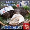 鳥取県産 ブランド天然岩がき 夏輝 約1kg詰め (岩ガキ/岩牡蠣/カキ) 6月初旬から中旬頃より順次発送