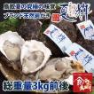 鳥取県産 ブランド天然岩がき 夏輝 約3kg詰め (岩ガキ/岩牡蠣/カキ) 6月初旬から中旬頃より順次発送