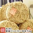 30年度米 新潟産コシヒカリ 玄米5kg 袖山商店/米屋の蔵出し米/ギフト プレゼント お祝い 贈り物 のし無料 送料無料