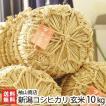 30年度米 新潟産コシヒカリ 玄米10kg 袖山商店/米屋の蔵出し米/ギフト プレゼント お祝い 贈り物 のし無料 送料無料