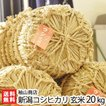 30年度米 新潟産コシヒカリ 玄米20kg(10kg袋×2)袖山商店/米屋の蔵出し米/ギフト プレゼント お祝い 贈り物 のし無料 送料無料