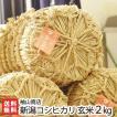 30年度米 新潟産コシヒカリ 玄米2kg 袖山商店/米屋の蔵出し米/ギフト プレゼント お祝い 贈り物 のし無料 送料無料
