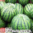 南魚沼八色産スイカ 小玉2個入り(1個2.3kg前後) 8月上旬〜発送/ギフトに!/送料無料