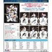 (予約)EPOCH 2018 パシフィック・リーグ ベースボールカード プレミアエディション BOX(送料無料) (10月20日発売予定)