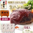 ギフト 肉 牛肉  和牛 飛騨牛 生ハンバーグ 120g×6個 送料無 御礼 内祝 御祝 プレゼント 肉のひぐち