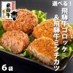 肉 牛肉 飛騨牛 惣菜 コロッケとミンチカツ 自由に組み合わせて6袋 送料無料 グルメ 簡単調理